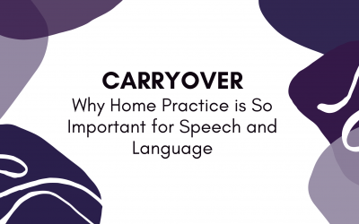 Carryover – Why Home Practice is So Important for Speech and Language